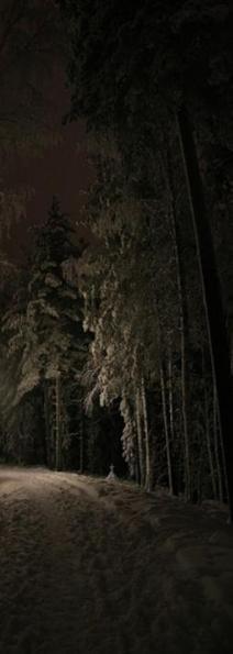 dark_snow